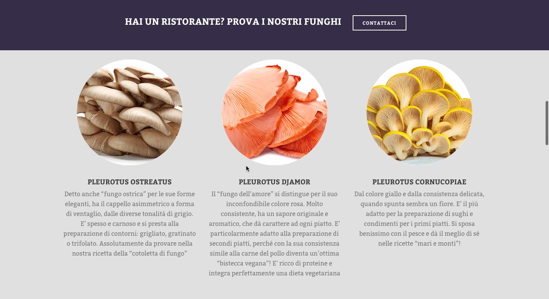 varieta-funghi-espresso